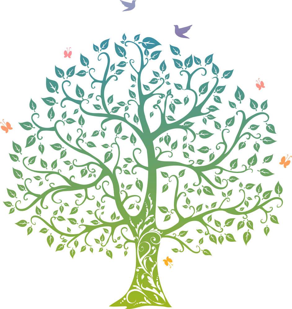 tree of life spring shames jcc